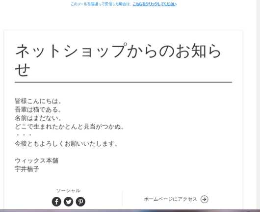 wix-newsletter