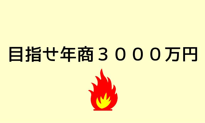 目指せ年商3000万円
