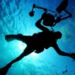 ブログテーマ「diver」