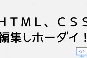 HTMLやCSS編集し放題